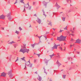 DC7843 Flowers, pink